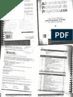 Administracion Profesional De Proyectos La Guia Pdf