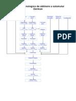 Schema Tehnologica de Obtinere a Salamului German
