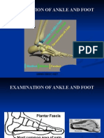 Ankle & Foot Exam