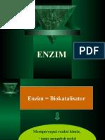 biokim-enzim-2015