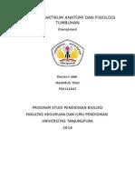 laporan praktikum transpirasi