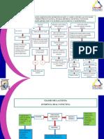 Normas Para Formación y Examen de La Cuenta
