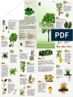 g01_plantas_btsno.pdf