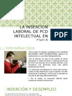 La Inserción Laboral de Pcd Intelectual en Chile