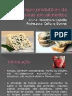 Fungos Produtores de Micotoxinas Em Alimentos