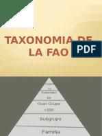 taxonomia suelo
