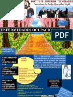 enfermedadesocupacionales-101110142038-phpapp02