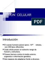2.- Todo acerca de la Lesion Celular