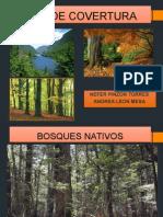 Exposicion de Manejo Covertura (1)