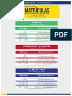 Segmentacion Matricula Octubre Febrero 2015
