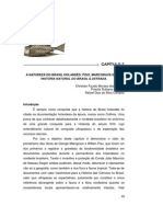 Capitulo Brasil Holandes