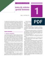 Anatomia Do Sistema Genital Feminini Lange