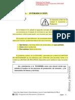 produccion_bienes_servicios.pdf