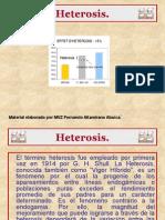 Heterosis. P. Point 2010.pptx