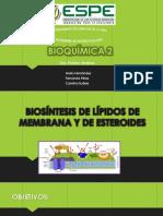BIOSINTESIS LIPIDOS