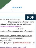 Sinapsis - Tipos- Lic. Susana REBASTI