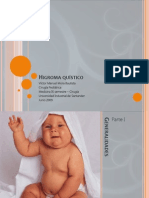 higromaqustico-090619173722-phpapp02.pdf