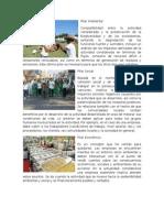 Pilar Ambiental, Social y Economico.docx