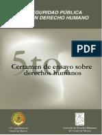 SEGURIDAD PUBLICA y DERECHOS HUMANOS