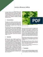 Brassica oleracea italica.pdf