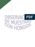 Informe de Hongos Rogelio