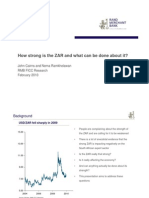 RMB February 2010 How Strong is the ZAR and What Can Be Done About It