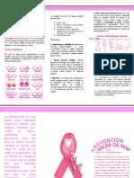 TRIPTICO CANCER DE MAMA.docx