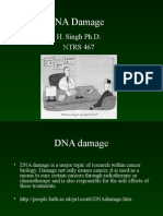 DNA Damage for Students