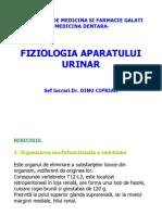 renal dentara .pdf
