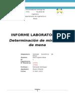 lab 1 geoeconomica microscopia
