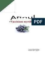 Vaccinium gffghmyrtillus