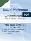 Daun Majemuk.pptx