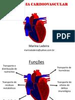 Aula Fisiologia - Cardio