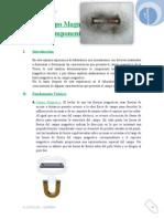 Campo Magnético Terrestre Componente Horizontal.doc
