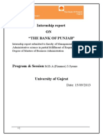 The Bank of Punjab Internship Report