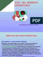 Semiologia Respiratorio1.ppt