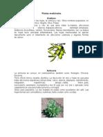 Plantas Medicinales de Guatemala