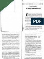 Pesquisa Quantitativa e Interpretativa - Bortoni-Ricardo