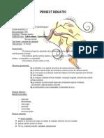 2proiectcerc  CULORILE  PRIMARE   si   SECUNDARE.doc