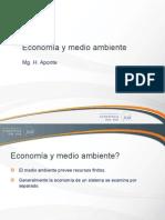 c14 Economía y Medio Ambiente 2013