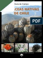 Cactáceas chilenas 2013