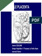 Cours DES Placenta embryo