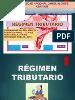 9. Regimen Tributario