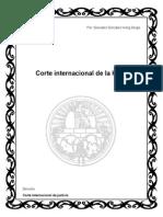 Corte Internacional de La Haya