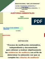 Auditoria - Generalidades