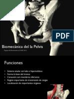 Biomecánica Pelvis UNAB 2012