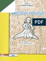 ageldun-amec-u.pdf