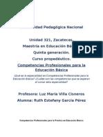 Competencias Profesionales para la Práctica en Educación Básica