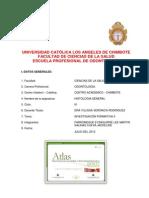 Investigacion Formativa - II Unidad Uladech - Grupo de Trabajo Odontología