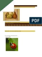 INSECT - [ 0 ] PRADATORI Naturali - 1. Afide - 2. Gargarite - Plante
